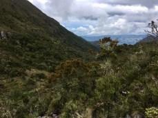 Wandern in Kolumbien: Im Subpáramo