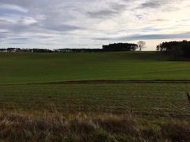 Blick über die Felder auf dem Gnitz