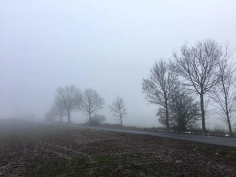 Landstraße im Nebel