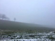 Wandern in der Holsteinischen Schweiz: Winterliche Stimmung bei Preetz