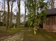 In Buchholz im Stadtpark