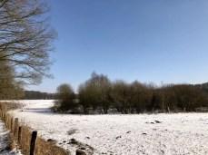 Winterliche Landschaft im Duvenstedter Brook (3)