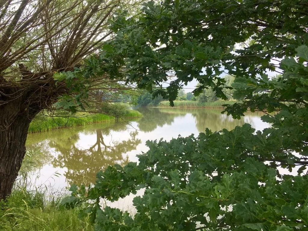 Elberadweg: Radtour von Lutherstadt Wittenberg nach Torgau