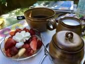 Fruchtig süße Begrüßung am Nachmittag in meiner Unterkunft in Moritz an der Elbe