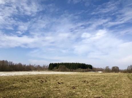 Landschaftliche Idylle auf dem ehemaligen Truppenübungsplatz Höltigbaum