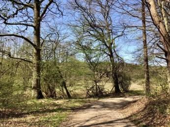 Wanderweg durch das Hellbachtal zwischen Güster und Mölln