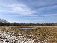 Winterlandschaft im Naturschutzgebiet Höltigbaum (2)