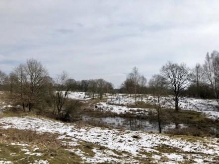 Winterlandschaft im NSG Höltigbaum in Hamburg