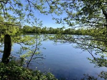 Blick auf den Boberger Kiessee im Naturschutzgebiet Boberger Niederung