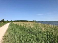Ostseeradweg am Saaler Bodden in Richtung Born