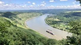 Blick auf den Rhein und die Weinberge vom Klettersteig Mittelrhein