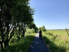 Der Bahndamm-Radweg südlich von Zingst