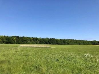 Landschaft am Barther Bodden