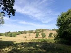Landschaft auf dem Skåneleden bei Veberod