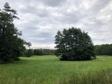 Landschaft bei Zierow, westlich von Wismar