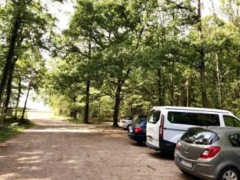 """Start am Parkplatz des """"FriedWaldes Behringen"""""""