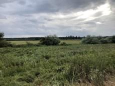 Landschaft bei Heiligendamm