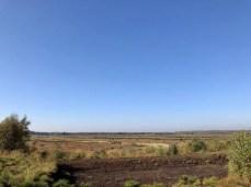 Landschaftliche Weite im Himmelmoor bei Quickborn