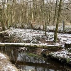 Am Raakmoorgraben