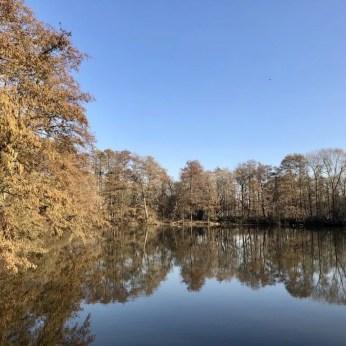 Blick über den Kükenbrack im Inselpark Wilhelmsburg
