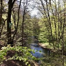 Entlang des Bille-Tals am Rande des Sachsenwaldes