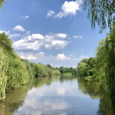 Wandern an der Osterbek in Hamburg - Am Ufer des Rückhaltebeckens Osterbek