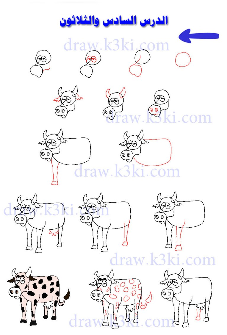 تعلم رسم البقرة