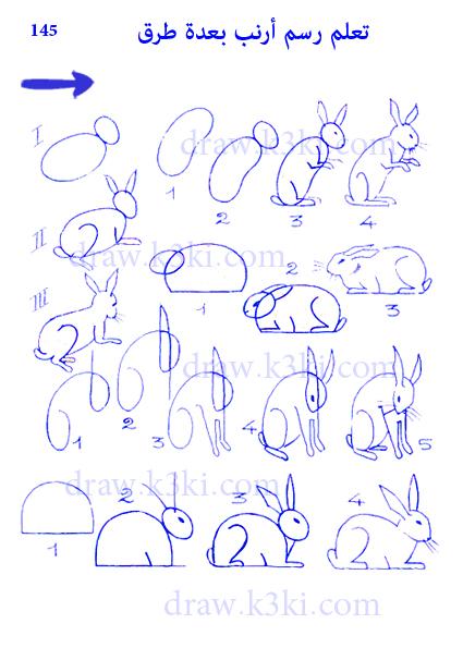 تعلم رسم أرنب بعدة طرق