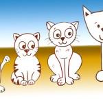تعليم الصغار كيفية رسم القطط
