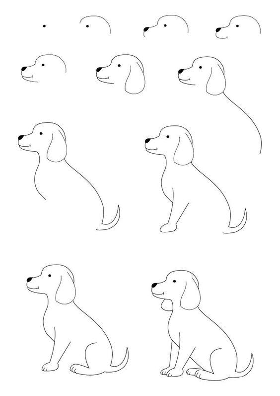 كيفية رسم كلب