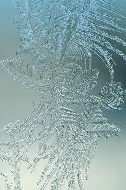 WindowFrost_Crystals4
