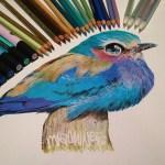 Artist Of The Week – Karla Mialynne
