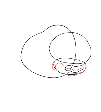 How To Draw Appa Avatar Step 3