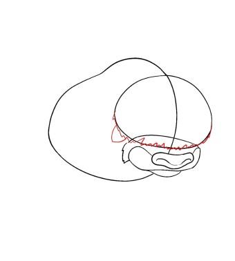 How To Draw Appa Avatar Step 4