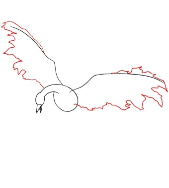 How To Draw Moltres Step 4
