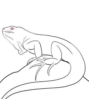How To Draw An Iguana Step 10