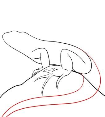 How To Draw An Iguana Step 7