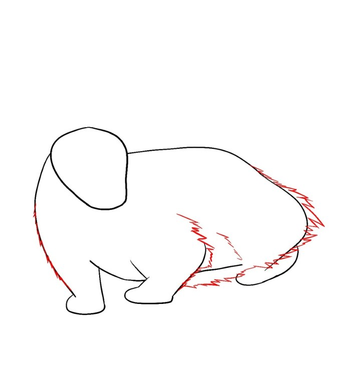 How To Draw A Badger Step 4