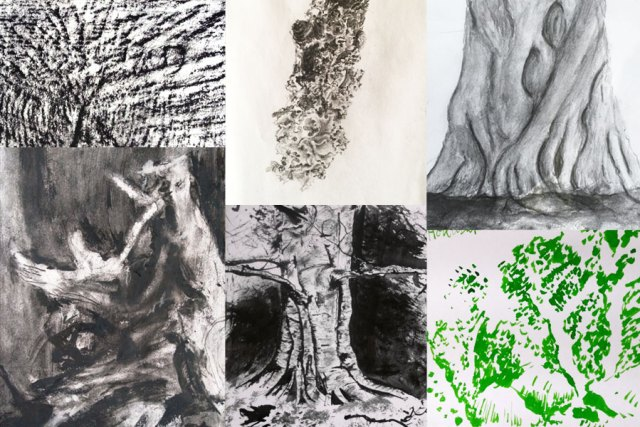 Tree drawings by Margaret Kerr and Blair Thomson