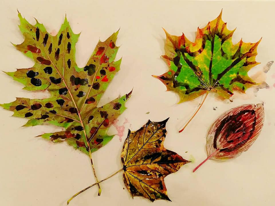 Leafy textures and colourful doodles with inks