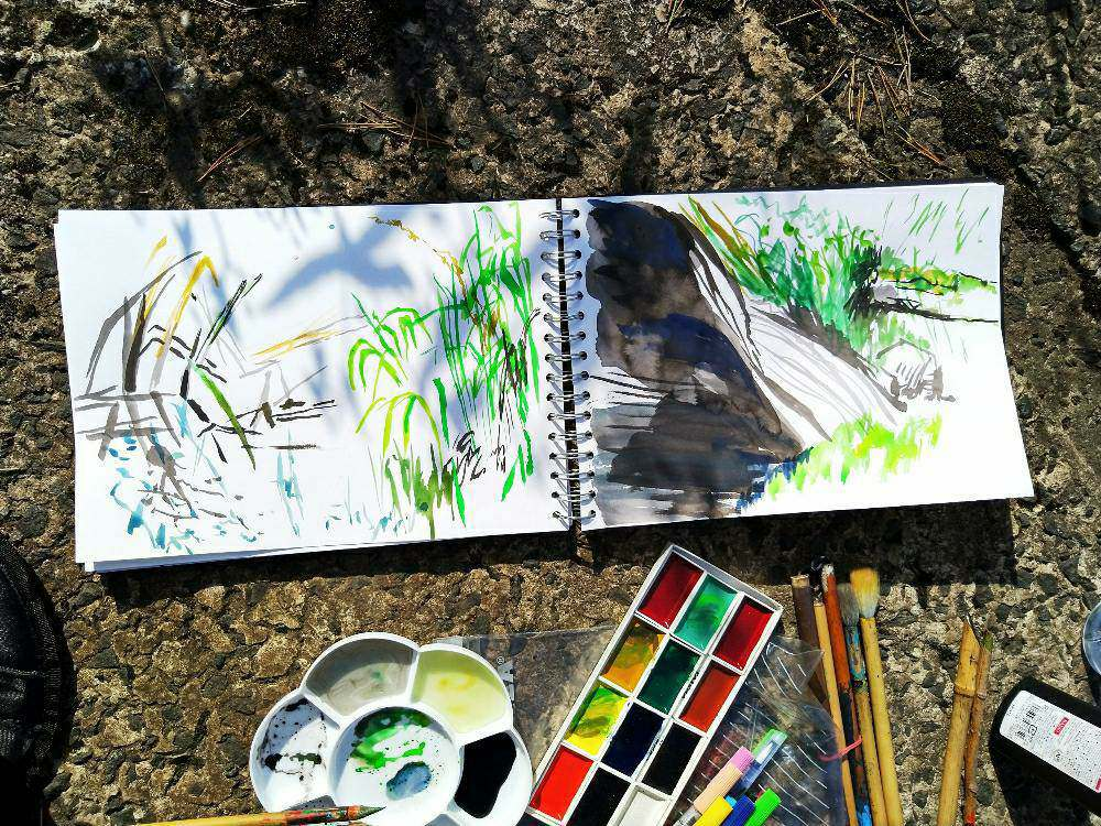 Experiments outside with Suibokuga Japanese landscape painting with Margaret Kerr