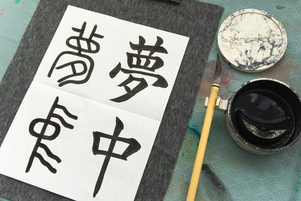 Shodo calligraphy - In the middle of a dream