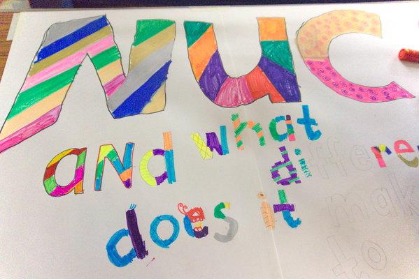 NUC Cash for Kids banner!