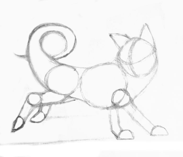 tail-curl-anime dog