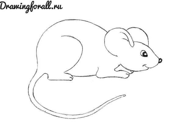 Картинки как рисовать мышь / picpool.ru