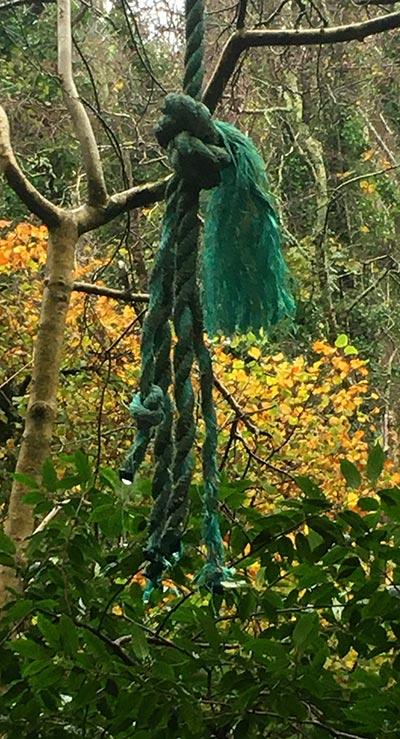 Woodland Signal by Victoria Burton-Davey