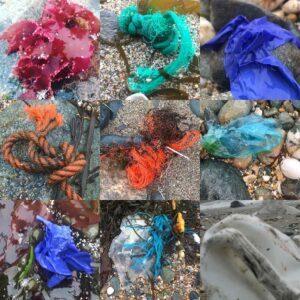Sea Monsters by Victoria Burton-Davey