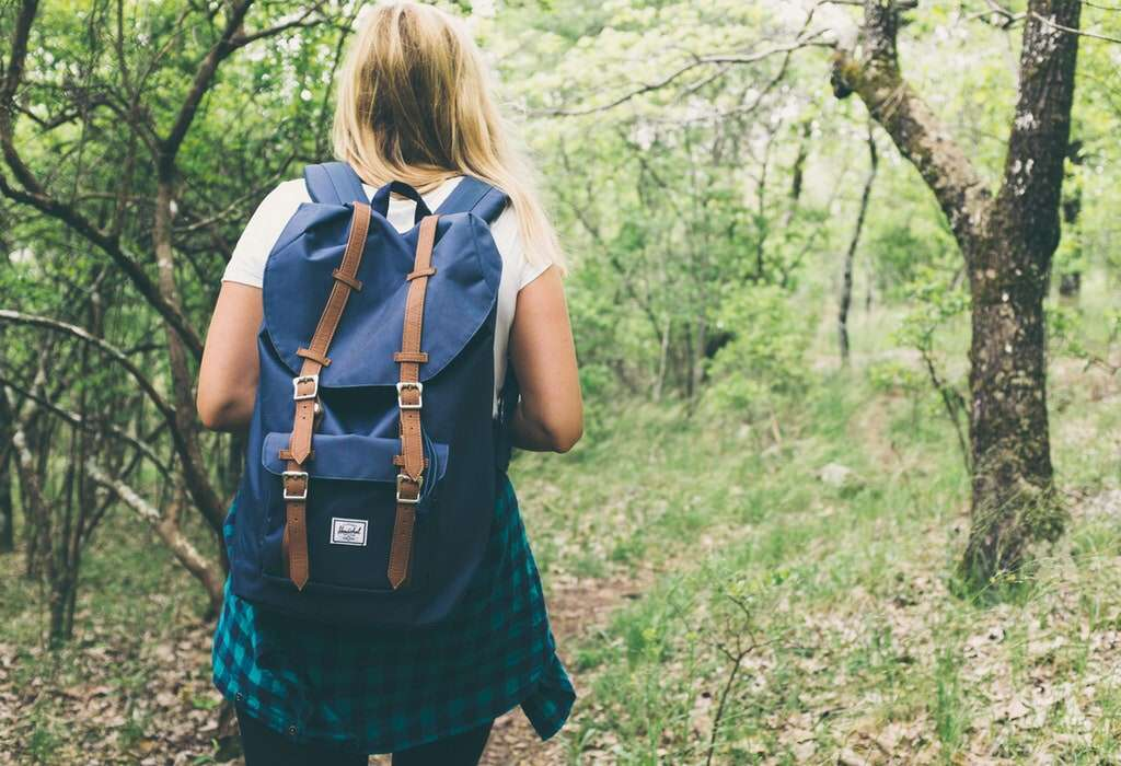 Taking a walk in nature Naturalistic intelligence