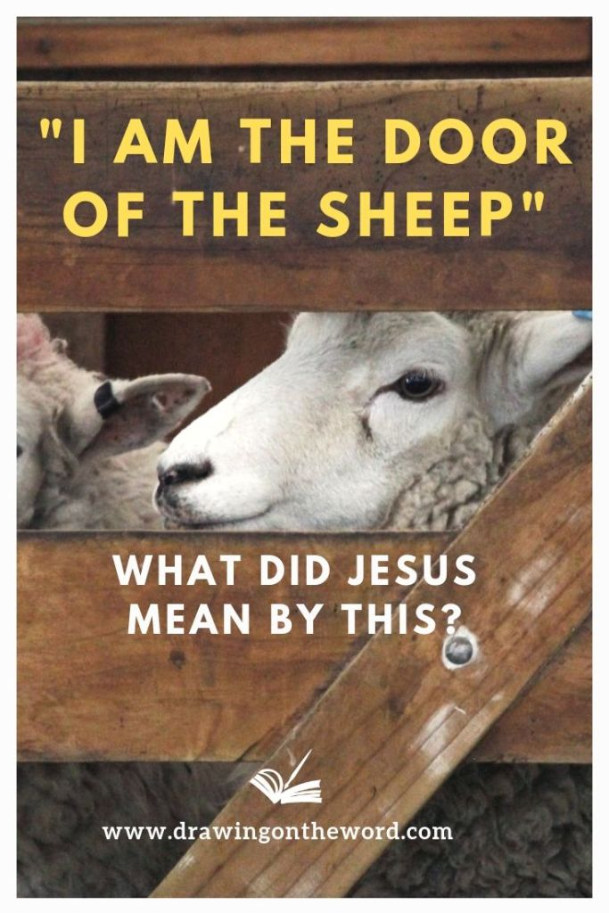 "What did Jesus mean by ""I am the door of the sheep""? Listen to the talk here on one of the ""I am statements"" in John's gospel from Chapter 10: 1-10. #drawingontheword #dotw #iamthedoor #iamthegate #iamthedoorofthesheep #imthegateofthesheep #iamsayings"