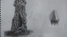 Sketchbook - Tree practice - graphite, and a nose